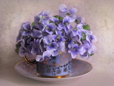 构成别致,静物,鲜花,杯子,飞碟,背景,美女,紫罗兰