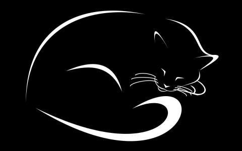 黑色的背景,绘图,猫