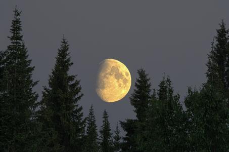 伯朝拉,平静,白夜,月亮,伊戈尔·波多巴耶夫