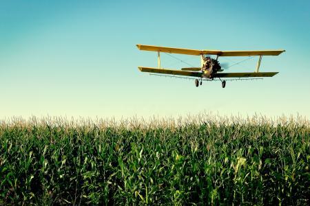 玉米芯,飞机,玉米