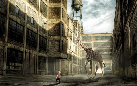 城市,长颈鹿,孩子