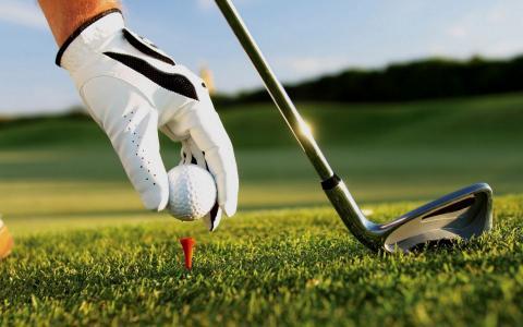 高尔夫,手,手套,棒,球,草坪,宏