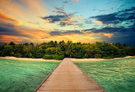 热带,码头,岛,丛林,美丽,天空,日落