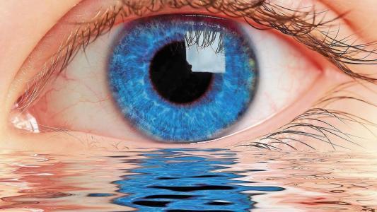 眼睛,幻想