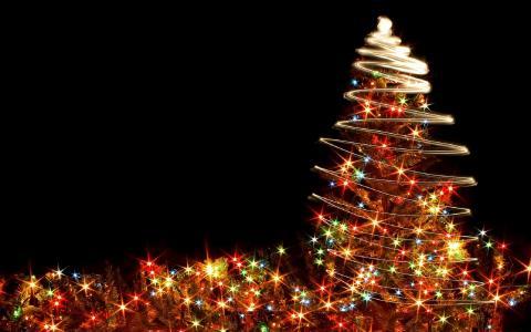 新的一年,圣诞树,圣诞节