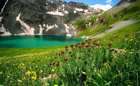 自然,湖泊,山脉,鲜花