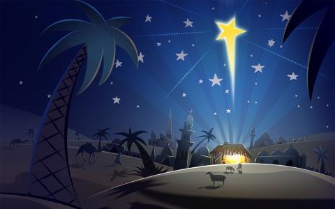 晚上,圣诞夜,明星,伯利恒,棕榈树