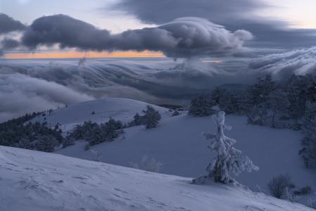 弗拉基米尔Ryabkov,自然,风景,克里米亚,丘陵,冬天,雪,Demerdzhi,树,冷杉,云,早上