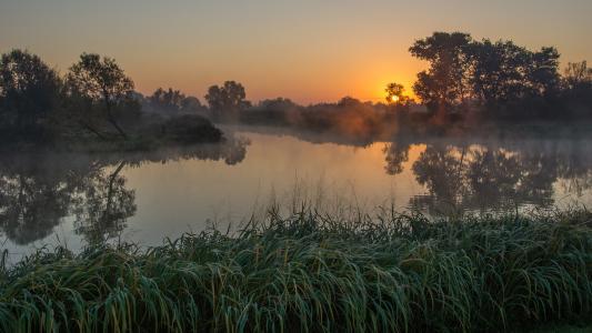 河的美丽的照片,在雾中,清晨