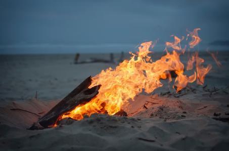 照片,晚上,火,篝火,美丽,沙,海滩,海洋