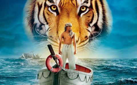 pi的生活,船,家伙,生活pi,老虎,船,海,水
