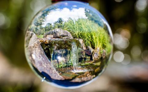 反射,玻璃球,奥斯陆,植物园,花园,挪威,宏