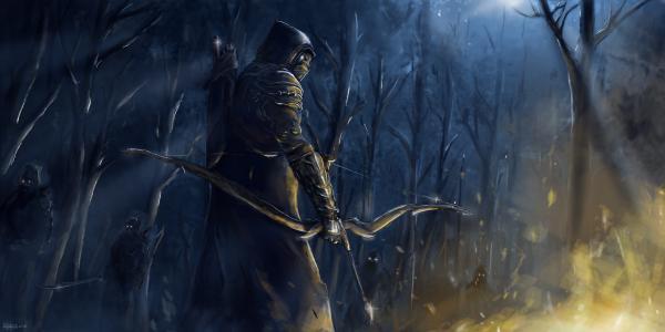 火,上古卷轴在线,晚上,森林,艺术,人,弓,武器