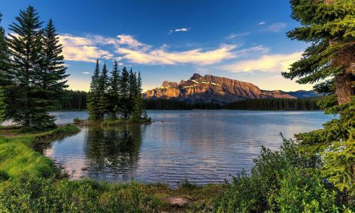 自然,夏天,加拿大,国家公园,湖,森林,杉树,山