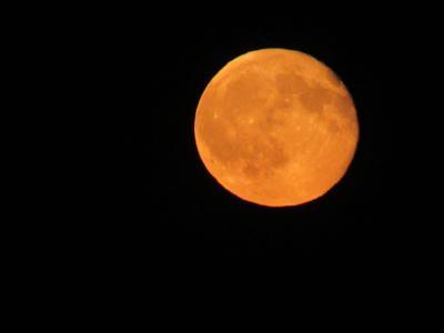 血腥,月亮,夜晚