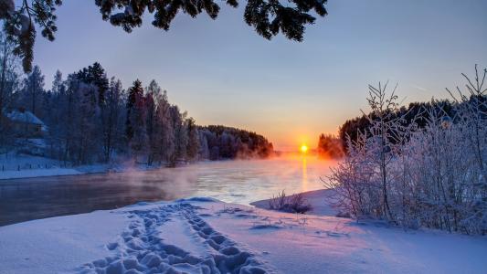 日出,雪,美,霜