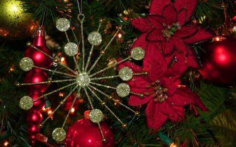 鲜花,新的一年,毛皮树,玩具,圣诞节