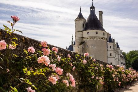 法国,城堡,美丽,法国的城堡