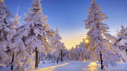 冬天,下雪
