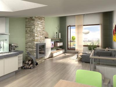 风格,山寨,设计,室内,房子,别墅