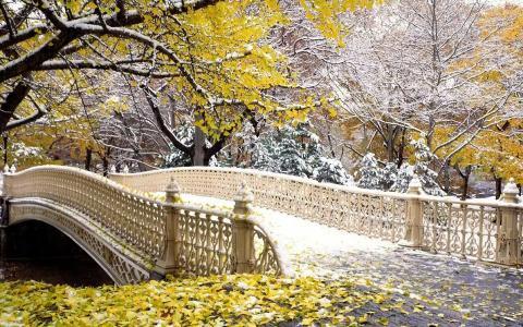 雪,桥,深秋
