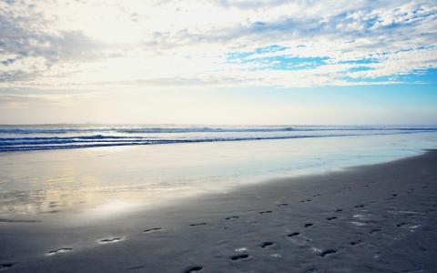 海,早晨,海滩
