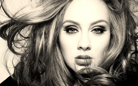 阿黛尔,名人,人,头发,阿黛尔,歌手,女孩