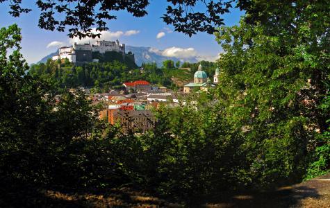 奥地利,房子,灌木,萨尔茨堡,城市