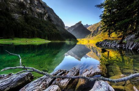 山,湖,水,倒影,树木,森林,美景