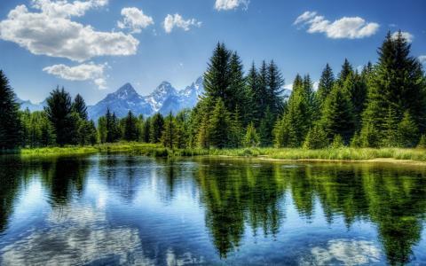 山,云,性质,树,森林,湖,反射