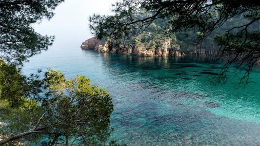 海,湾,岩石