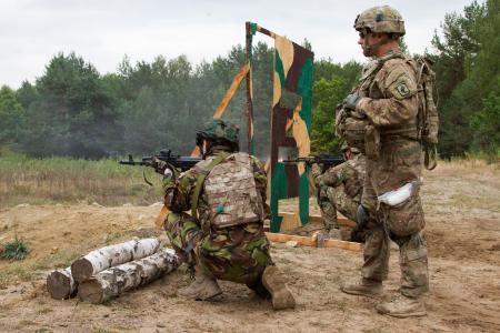 乌克兰国民警卫队,Stgelba,美国讲师