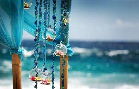 海洋,景观,宏,照片,装饰,鲜花