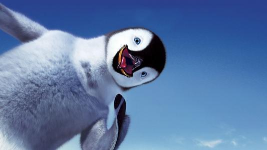 做你的脚,微笑,天空,企鹅