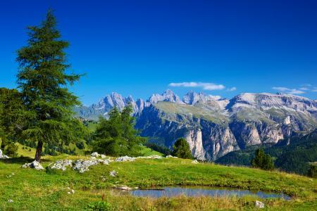 树,山,意大利,性质,阿尔卑斯山,阿尔卑斯山,石头,意大利