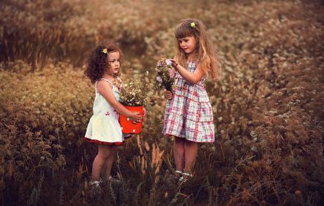 场,草地,儿童,花束