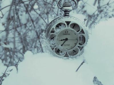时钟,欧米茄,银,雪,树枝,冬天,手,表盘