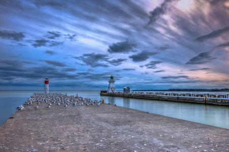 海洋,海岸,灯塔,码头,天空,云,地平线,美女,海鸥