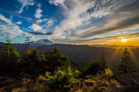 自然,景观,山