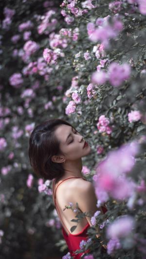 蔷薇与性感女神