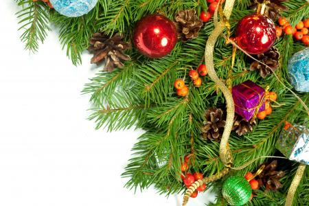 颠簸,玩具,圣诞树,分支