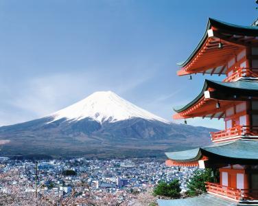日本,富士山,市,樱花