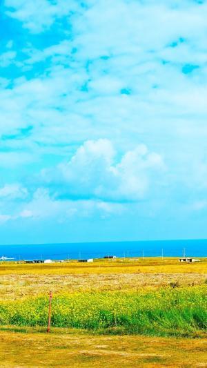清新草原美景