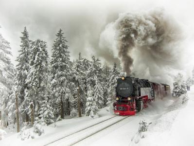 蒸汽机车,冷杉,铁路,树,组成,雪,火车,冬天