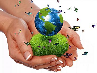 手,地球,行星,草,蝴蝶