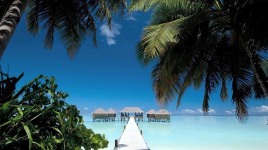 马尔代夫,沙滩,水,夏天,天空,岸,沙,海洋,桥,房屋,棕榈树