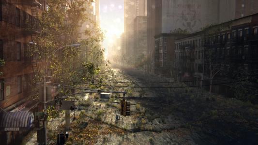 艺术,废墟,废弃,乔西亚,城市,丛林,街道