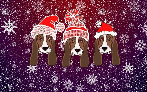 雪,圣诞节,帽子,新年,冬天,极简主义,枪口,狗年,2018年,假日