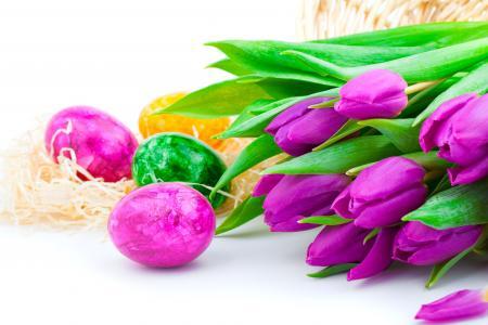 春天,鲜花,假期,丁香,郁金香,复活节