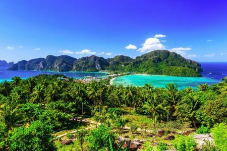 泰国,公园,山,海,景观,甲米,棕榈树,性质
